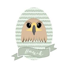 hawk-new