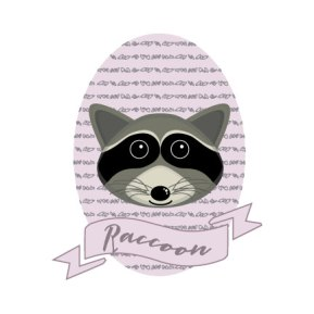 raccoon-new