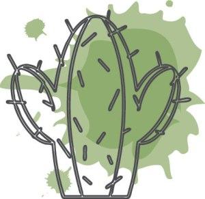 Cactus-icon